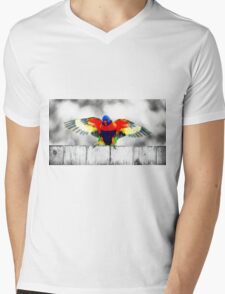 Gold Coast Rainbow Lorikeet Mens V-Neck T-Shirt
