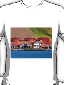 Stromness Whaling Station 2 T-Shirt