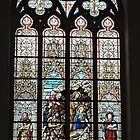 Stained Glass Window, St Salvator's cathedral, Bruge, Belgium  by Margaret  Hyde