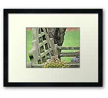Bench in the Green Framed Print
