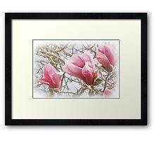 Pink Pastels Framed Print