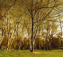 tree epics by Alexandr Grichenko