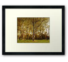 tree epics Framed Print