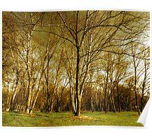 tree epics Poster
