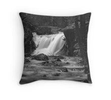 Gray Eagle Falls Throw Pillow