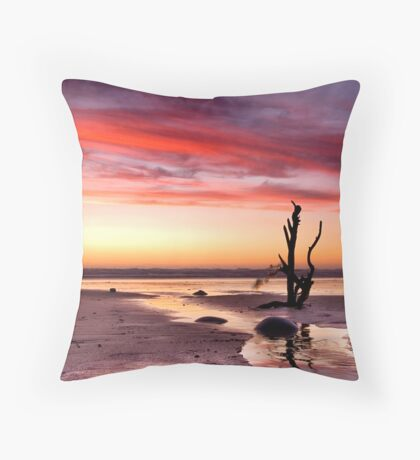 Stick in the sand Throw Pillow