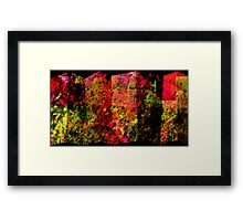 COLORED SCREEN PANELS Framed Print