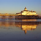 Eastbourne Seafront by Kasia Nowak
