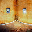 Your Eternal Prison by David Haworth