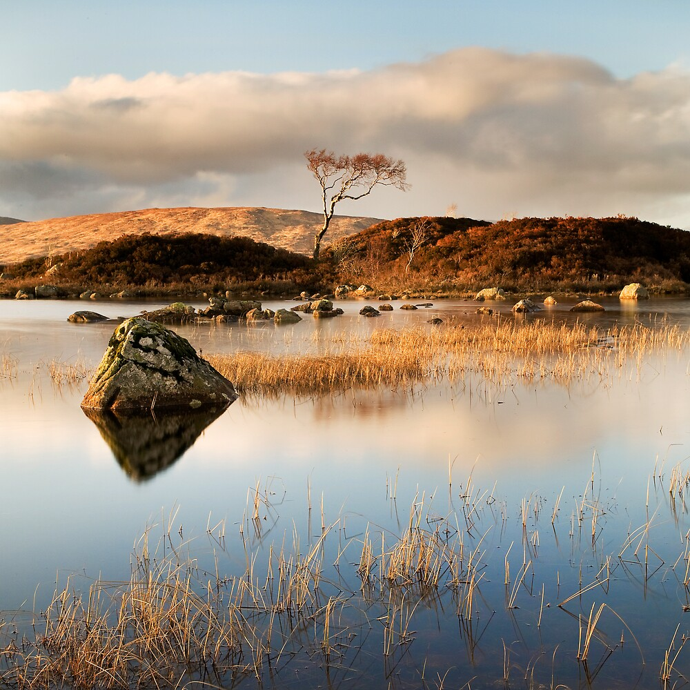 Rannoch Moor, Highland, Scotland by Daniel Webb