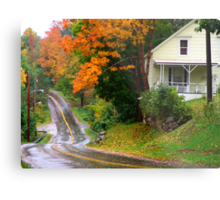 Other Side of the Road Metal Print