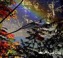 Rainbow Trees by soulfocus