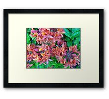Multi Colored Vision Framed Print