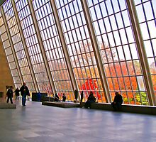 Architectual Window With Fall Trees by Wendy Mogul