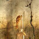24.3.2015: Broken Glass on Mantelpiece by Petri Volanen