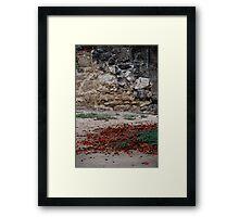 Fallen Pedals Framed Print