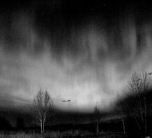 A night out by aurewyn