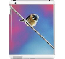 Bird on a Wire (American Kestrel) iPad Case/Skin