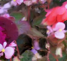ABSTRACT FLORAL DESIGN by pjm286