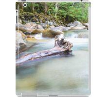 Lynn Valley iPad Case/Skin