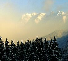 Winter Vista by HelmD