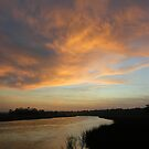 Lowcountry Morning by Tibby Steedly