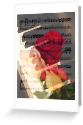 Music by Donna Adamski