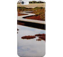 Limburner's Lagoon - Geelong iPhone Case/Skin