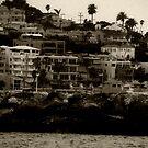 California by Lynn  Gettman