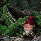 Mr Gnome! by Squealia