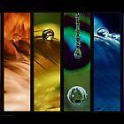 Rainbow drops 10 by Angelique Brunas