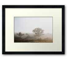 The Fog that Wouldn't Lift - Cape West Coast Framed Print
