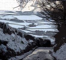 Dyrham Snow by Mick Yates