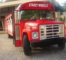 CRAZY WHEELS!!!! by Daniela Cifarelli