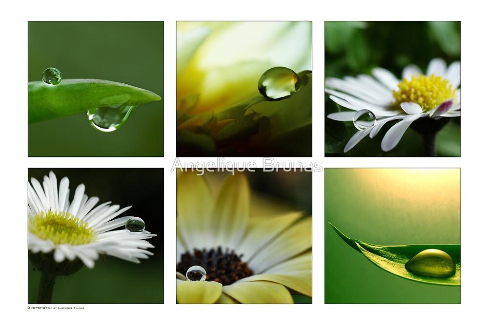 Dropshots by Angelique Brunas
