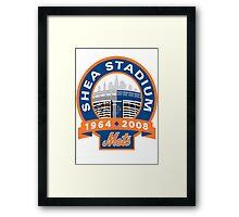 Mets Framed Print