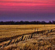 Sunsetting at Rupanyup by Jennifer Craker