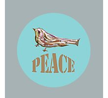 Peace 4 Photographic Print