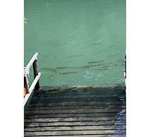River Fish Photographic Print