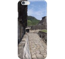 El Tajin, Mexico - Uncovering A Buried Treasure iPhone Case/Skin