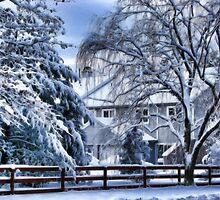 Snowy Fairy Tale by vadim19