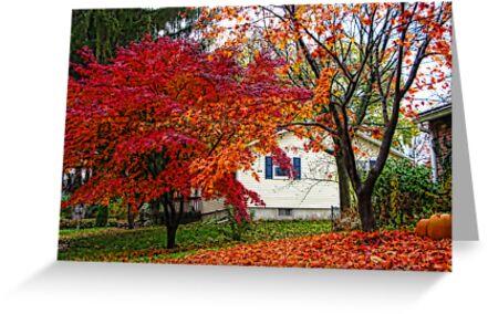 Beautiful colors of Fall by vadim19