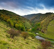 Autumn in Cressbrook Dale by Simon Davis