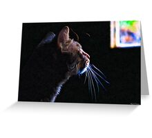Yearning - Tabby Cat Profile Greeting Card
