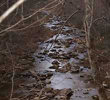 Stony Creek by lindseychase06