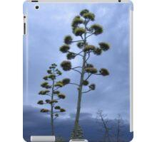 Cactus in the evening iPad Case/Skin