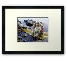 River Buddha Framed Print