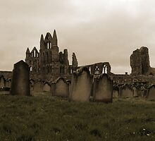 Whitby Abbey Overlooking Graveyard by shane22