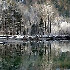 reflections of winter by Patricia Ausweger Matz