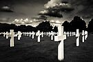 Fields Of The Lost - American Cemetery by Mark Tisdale